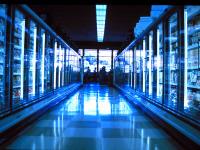 Turma reconhece direito a adicional de insalubridade a ajudante de frigorífico