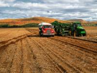 Tribunal concede aposentadoria mista a trabalhador rural