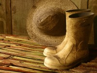 TRF4 reforma sentença que negava auxílio-doença a agricultora